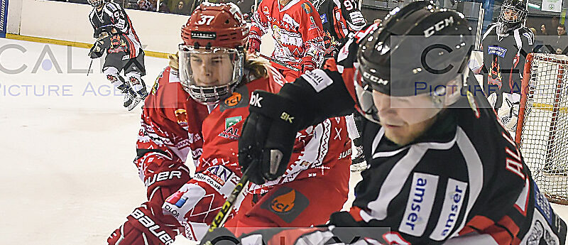 2416 ©Calyx Picture Agency  Swindon Wildcats v Cardiff Fire